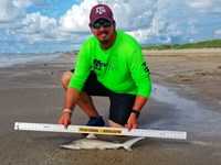 Texas Shark Research Team - Robert Grimsley